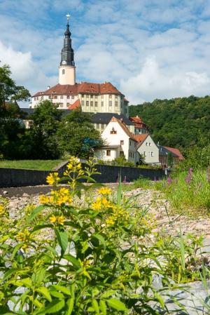 Müglitz mit Schloss Weesenstein