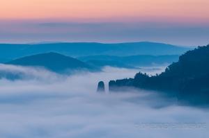 Nebel im Kirnitzschtal