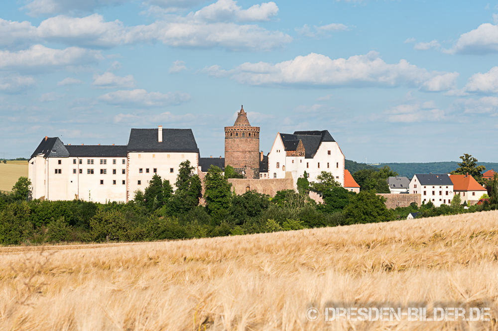 Burg Mildenstein mit Kornfeld