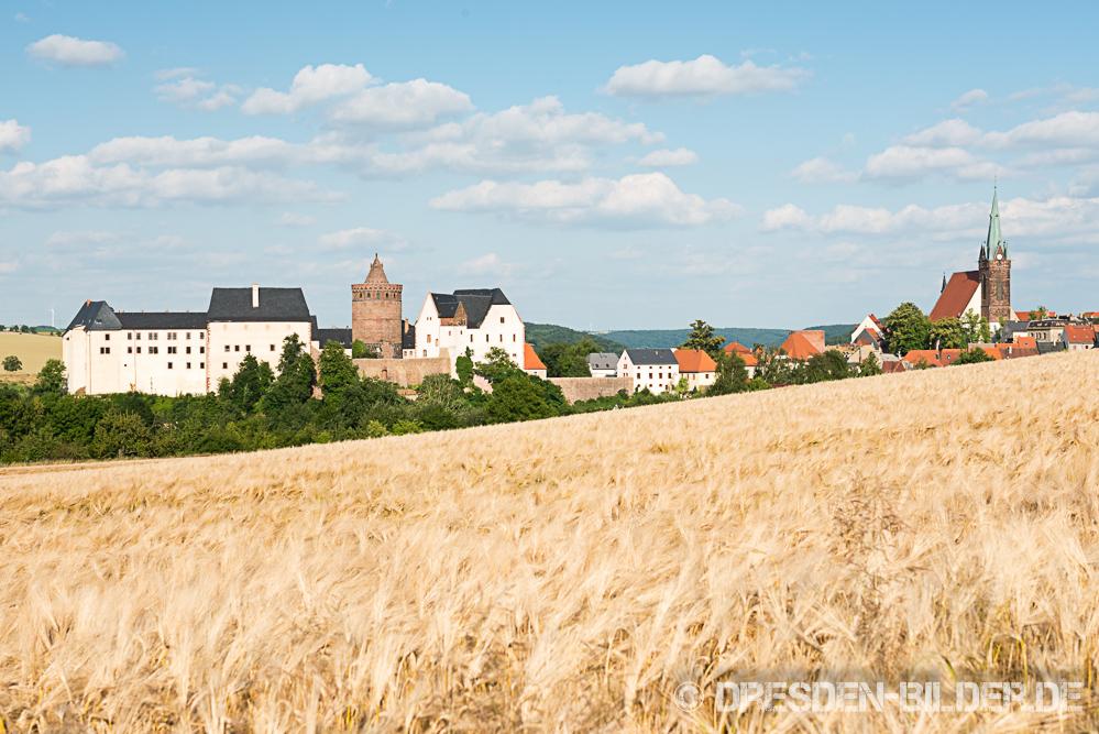 Leisnig und Burg Mildenstein