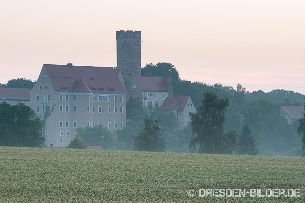 Morgennebel über Gnandstein