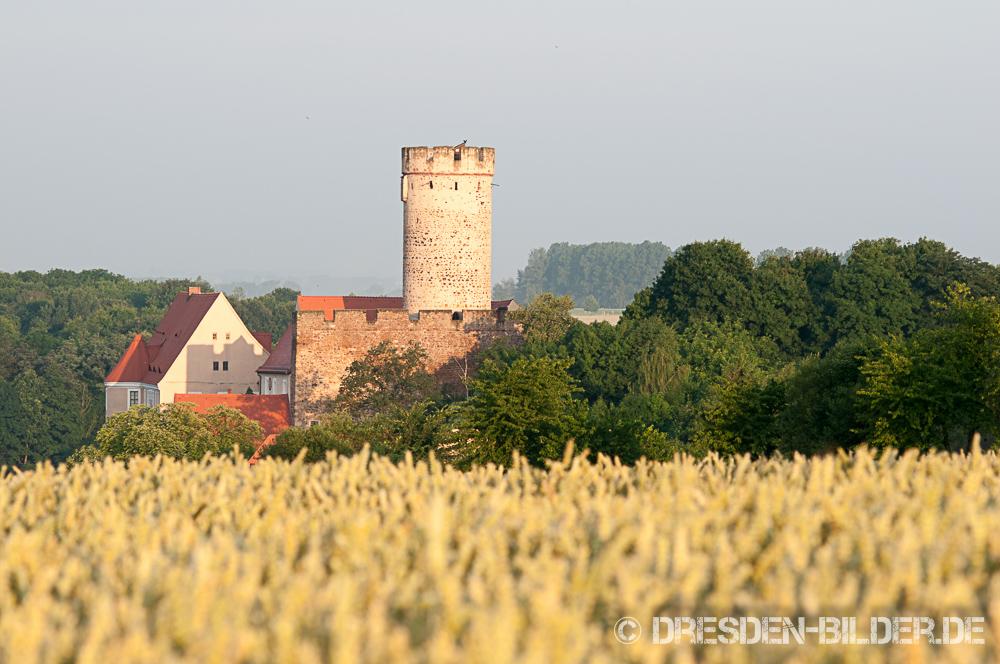 Sommer in Gnandstein