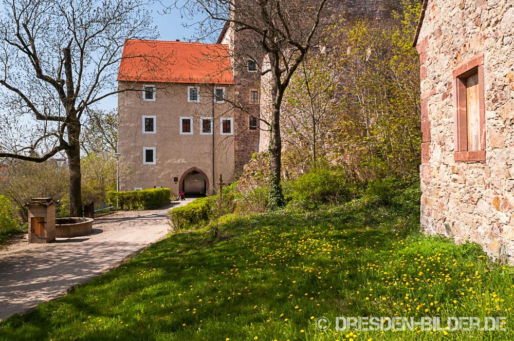Frühlingserwachen in Gnandstein